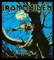 Iron Maiden - Fear Of The Dark (.Woven Patch)