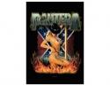 Pantera - Dancer (Lge  Magnet)