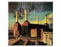 Pink Floyd - Animals (Greeting Card)